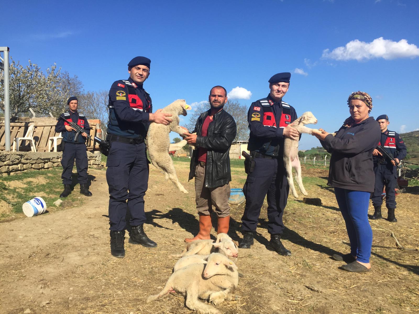 Jandarma'dan Kuzu Operasyonu